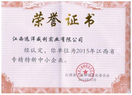 江西省专精特新中小企业证书