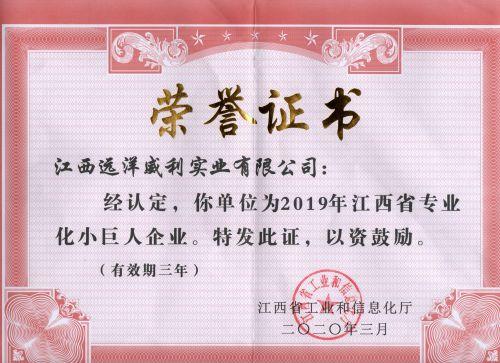 江西省专业化小巨人企业